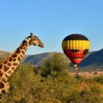 pilanesberg-ballon